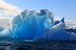 Antarcticine